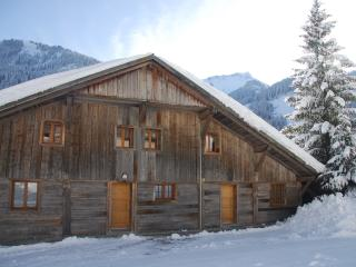 Beautiful 3 bedroom Apartment in Chatel with Internet Access - Chatel vacation rentals