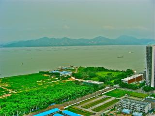Master bedroom W/SeaView/bathroom/ near Shekou Sea World/Ferry/Metro  for short or long stay - Guangdong vacation rentals