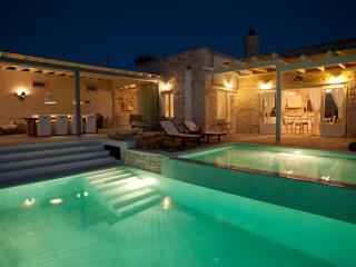 Luxus Villa THEA ,Seaview, InfinityPool, Garden - Pitsidia vacation rentals