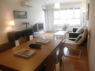 4 bedroom Apartment with A/C in Logroño - Logroño vacation rentals