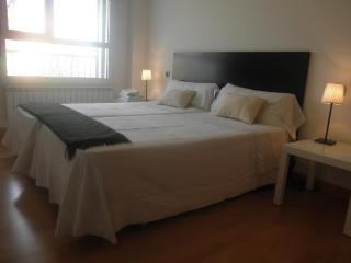 4 bedroom Apartment with Dishwasher in Logroño - Logroño vacation rentals