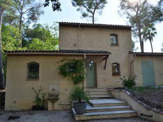 Charming Villa in Valbonne - Valbonne vacation rentals