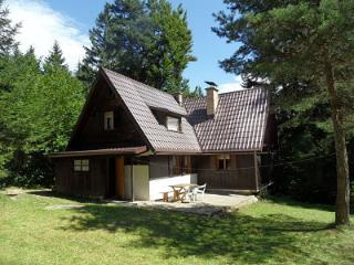 Nice House with Central Heating and Television - Ruzomberok vacation rentals