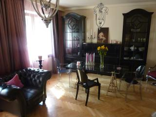Luxurious & spacious one bedroom, great location - Warsaw vacation rentals