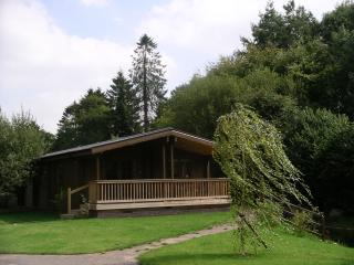Willowbank Lodges/Herons Nest - Pewsey vacation rentals