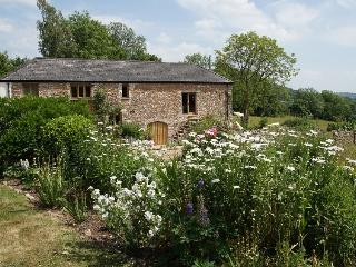 Spacious Barn with Internet Access and Cleaning Service - Honiton vacation rentals