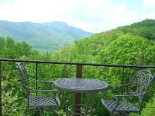 Hawks Peak South 221- level entry, mountain view - Boone vacation rentals