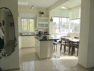 Central, Clean and Comfortable Family Rental - Jerusalem vacation rentals