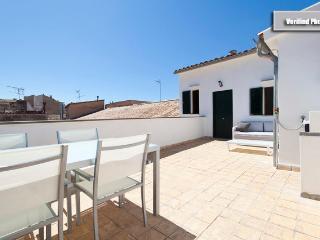 Lovely, private terrace - Palma de Mallorca vacation rentals