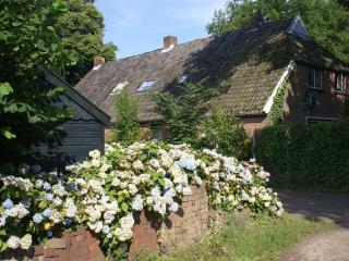 Farmhouse in Beautiful Rural Diever, Drenthe - Come Visit the Real Netherlands - Drenthe vacation rentals
