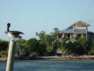 Calypso Beach Retreat Island Getaway - Ambergris Caye vacation rentals