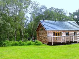 Onida Cabin - Dalavich vacation rentals