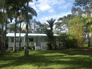 Hawaii-Style' Family & Group Retreat - Hilo District vacation rentals