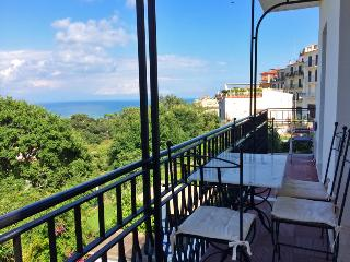 Amazing sea view apartment - beach at 1000 mt - San Felice Circeo vacation rentals