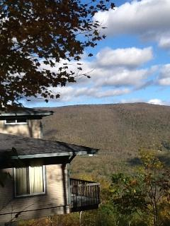 Horse Show and Summer Get-a-way - Stratton and Bromley Ski Areas vacation rentals