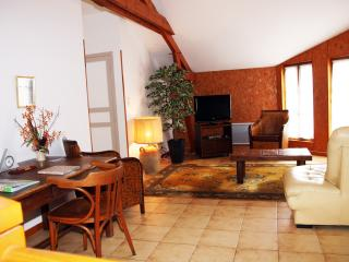 Lovely 4 bedroom Gite in Persac - Persac vacation rentals