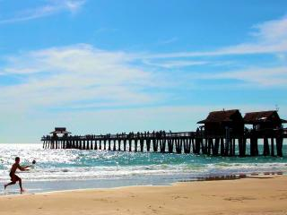 LUXURY RENTALS ~ THE PIER HOUSE ~ BEACH VIEWS - Naples vacation rentals