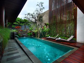 Canggu New 3 Bedroom Villa - Umalas vacation rentals