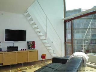 Ørestad - Vm-huset By B.i.g Architects - 581 - Stroeby vacation rentals
