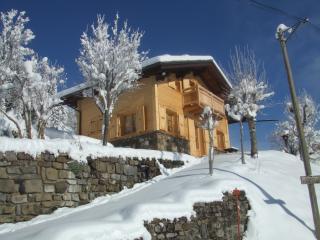Bright 3 bedroom La Clusaz Ski chalet with Internet Access - La Clusaz vacation rentals