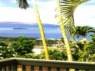 OCEAN VIEW PRIVATE ROMANTIC COTTAGE ABOVE WAILEA - Wailea vacation rentals