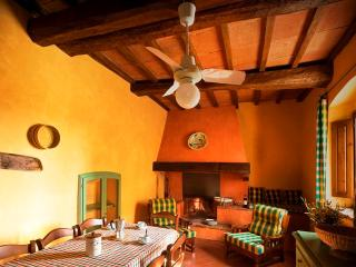 Apartment Malvasia shared garden on organic farm - Molino del Piano vacation rentals