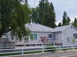 Shasta Alpine View -Spa, Sauna, Steamy View! - Shasta Cascade vacation rentals
