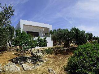 Cozy Villa with Internet Access and Private Outdoor Pool - Castrignano del Capo vacation rentals