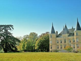Entire Estate:Castle & Cottage - Meslay-du-Maine vacation rentals