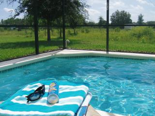 Orlandoskyvilla - Orlando vacation rentals