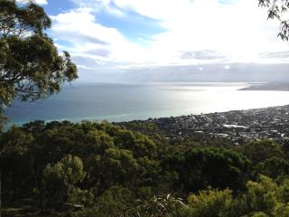 The most stylish house on the hill Northern Aspects - Arthurs Seat vacation rentals