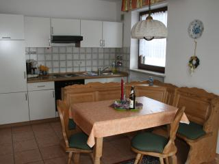 Nice Condo with Internet Access and Garden - Inzell vacation rentals