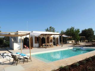 cisternino villa in olive groove - Cisternino vacation rentals