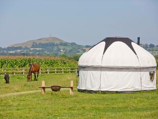 Romantic 1 bedroom Glastonbury Yurt with Internet Access - Glastonbury vacation rentals