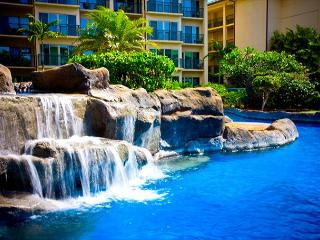 STEPS to THE BEACH from A203!  FAST dedicated WIFI ***** - Kapaa vacation rentals