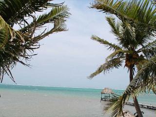 Deluxe 1 Bedroom Ambergris Caye Belize Condominium - Ambergris Caye vacation rentals