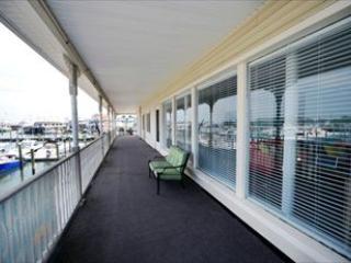 Dog Friendly at South Jersey Marina 122784 - New Jersey vacation rentals