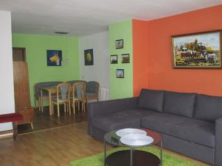 Vacation Apartment in Weilheim an der Teck - 1055 sqft, spacious, comfortable, sunny (# 3578) - Blaubeuren vacation rentals