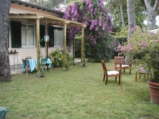 Nice Villa with Washing Machine and Television - Forte Dei Marmi vacation rentals