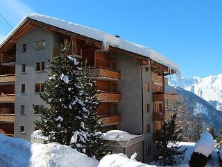RESIDENCE BEAUVOIR (132M2) - Verbier vacation rentals