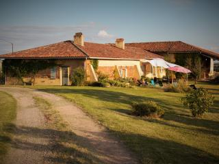 Bright 5 bedroom Salvagnac Farmhouse Barn with Internet Access - Salvagnac vacation rentals