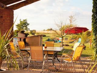 Nice 5 bedroom Farmhouse Barn in Salvagnac - Salvagnac vacation rentals