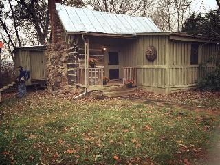 Historic Log Family Cabin - Lexington vacation rentals