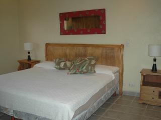 El Cometa #13 HP004 - Tamarindo vacation rentals