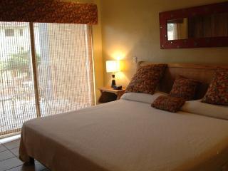 El Cometa #14 HP005 - Tamarindo vacation rentals