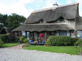 Tigh Mor Tiernee Connemara Galway - Lettermore vacation rentals