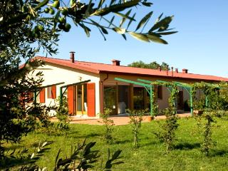 Casa Vacanze le Scuderie type 1 Sunny 3 bedroom - Donoratico vacation rentals