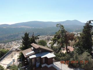 Penthouse with Pool, Artist Colony, Zfat - Safed vacation rentals
