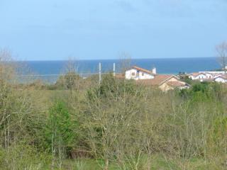 JOLIE MAISON BASQUE - Bidart vacation rentals