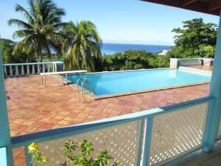 Gorgeous sea view villa with huge pool and terrace - Old Town vacation rentals